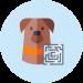 estimulacion_perros