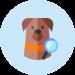 perros-detectores